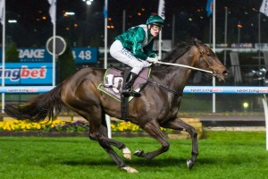 Jockey Craig Newitt will partner Samaready in the Group 1 Newmarket Handicap