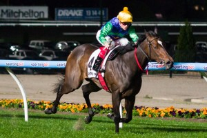 Thump has been confirmed for an appearance in the 2014 Group 1 William Reid Stakes on Friday