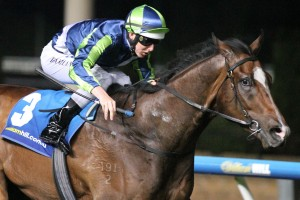 Keen Array will return to the races in Saturday's Group 3 Bletchingly Stakes at Caulfield. Photo: Ultimate Racing Photos