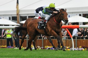 The 2014 Sir Rupert Clarke Stakes will figure at the first major target for Manawanui through spring