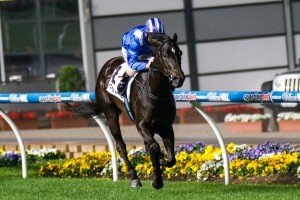 Tawteen is favourite to win the 2014 Gucci Stakes after winning the Crockett Stakes.
