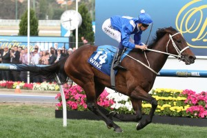 Winx wins the 2015 Cox Plate at Moonee Valley. Photo: Ultimate Racing Photos