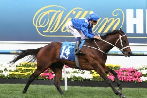 Winx will return to racing in Saturday's 2016 Apollo Stakes. Photo: Ultimate Racing Photos