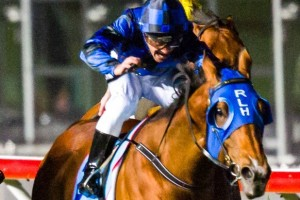 Buffering is on the second line of betting for the 2013 VRC Sprint Classic.