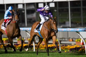Trainer Gai Waterhouse has revealed classy stayer Queenstown will target the 2014 Metropolitan Handicap