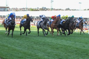 Adelaide (outside) has displayed a keen turn of foot to win the 2014 Cox Plate. Photo: Sarah Ebbett