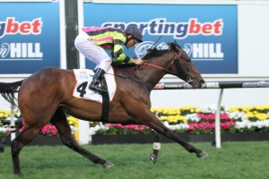 Eliza Park International Stakes winner Suavito is favourite to win the Matriach Stakes.