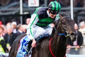Shamus Award features in the 2014 Australian Guineas nominations.