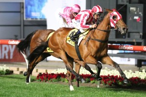2017 Matriarch Stakes Field & Betting Odds