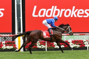 Rostropovich ran 5th to Winx, above, in the 2018 Cox Plate at The Valley. Photo by Ultimate Racing Photos.