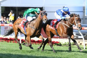 Blinkers back on Humidor for re-match with Winx in 2018 Cox Plate