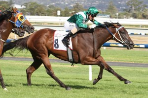 Runway Star could retire from racing following Saturday's Group 3 Bletchingly Stakes at Caulfield. Photo: Jenny Barnes