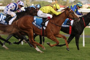 Miracles Of Life pipped Gregers to win the 2015 Robert Sangster Stakes