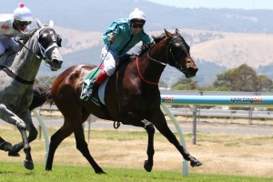 Omer Ay has led Barigan Boy to an impressive victory despite losing his irons at the beginnng of the race at Morphettville on Saturday.