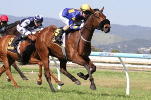 Creance in Schweppes Handicap at Morphettville Parks on 27 September 2014. Picture by: Jenny Barnes.