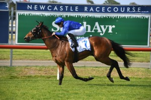 Savatiano, above, scores an all the wat win in The Hunter at Newcastle. Photo by Steve Hart.