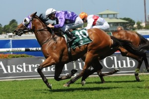 Pheidon has been included in nominations for the 2014 Rough Habit Plate