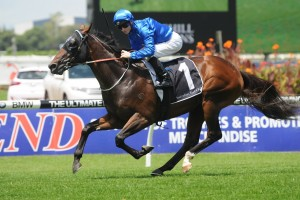 2016 Bill Stutt Stakes Tips and Betting Preview
