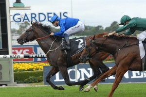 Astern has been charged with overcoming barrier 17 in Saturday's Group 1 Golden Slipper at Rosehill. Photo: Steve Hart