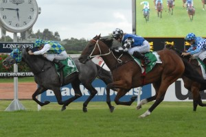 Coolring Heads 2016 Weetwood Handicap Field & Odds