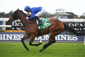 Savatiano, above, is challenging for favourtism in the P.B. Lawrence Stakes at Caulfield. Photo by Steve Hart.