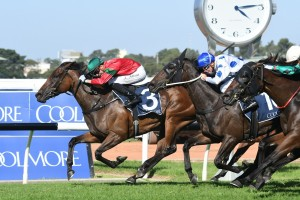 Daysee Doom, above in green and red colours, wins the G1 Coolmore Classic at Rosehill. Photo by Steve Hart.