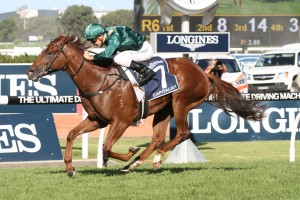 Capitalist has been confirmed to line up for the 2016 Roman Consul Stakes on October 1st. Photo: Steve Hart