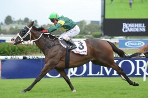 Group 1 champion Foreteller will resume in this weekend's Group 2 P.B. Lawrence Stakes