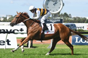 Gailo Chop, above, is a good chance to back up in the Tancred Stakes at Rosehill. Photo by Steve Hart.