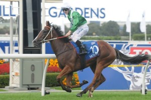 Mossfun recorded her maiden win at Group 1 level with a fast-finishing win in the 2014 Golden Slipper.