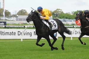 Silent Achiever will begin her 2014 Spring Racing Carnival campaign in the Memsie Stakes.