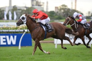 Hot Snitzel is amongst the 23 nominations for the 2013 Sandown Stakes.