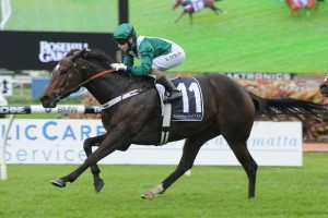 Belle De Coeur has been included in nominations for the 2014 Moreton Stakes
