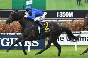 2017 WA Guineas Nominations & Betting