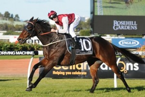 The John O'Shea-trained Generalife enjoyed three Group placings in the spring and is our tip to win the Festival Stakes.