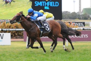 Nostradamus has been scratched from the 2014 Danehill Stakes and will instead run in the Golden Rose.