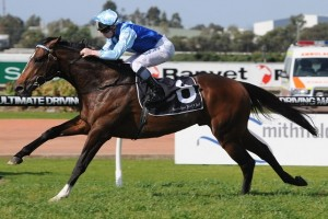 Honorius leads the nominations for the Parramatta Cup at Rosehill on Saturday.