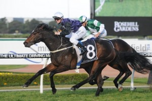 Jockey Kathy O'Hara is confident of a strong showing from resuming Va Pensiero in the 2014 Newmarket Handicap