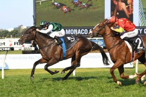 Addictive Nature beat Assimilate on the line in the Ming Dynasty Quality. Photo: Steve Hart