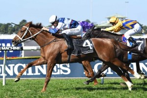 Race favourite Alward posted a last-gasp win in the fourth. Photo: Steve Hart