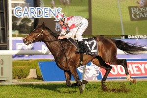 Greatwood is the races.com.au tip to win the 2014 Kingston Town Stakes at Rosehill Gardens tomorrow.