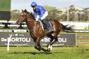 James McDonald and Astern, above, combine to win the Golden Rose at Rosehill. Photo Steve Hart.