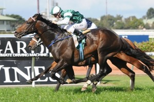 Cluster has produced a superior turn of foot to win the 2014 Theo Marks Stakes