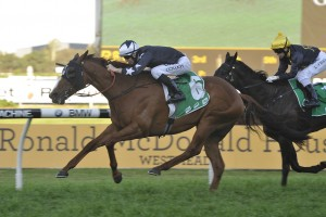 2016 Shannon Stakes Winner Moral Victory on Song for Toorak