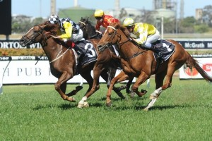 Eurozone finished his 2013 Spring Racing Carnival campaign with a win in the Stan Fox Stakes.
