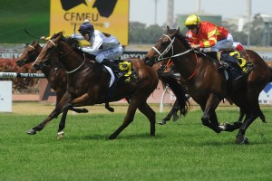 Time For War has been confirmed in the final field for the 2014 Champagne Classic