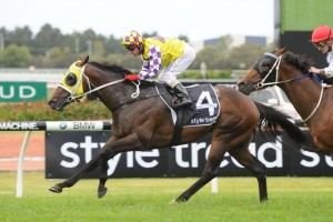 Sacred Star is aiming for a ballot-free entry into the 2014 Stradbroke Handicap