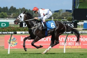 The 2014 Hill Stakes may figure as a target for Specific Choice
