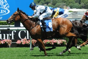 Red Excitement is the favourite in the Chester Manifold Stakes betting at Ladbrokes.com.au.