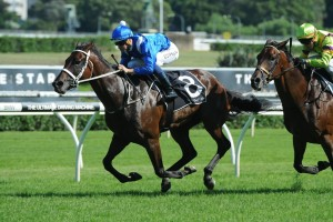 Winx continued her winning run with a first up victory in the Apollo Stakes at Randwick. Photo by Steve Hart.